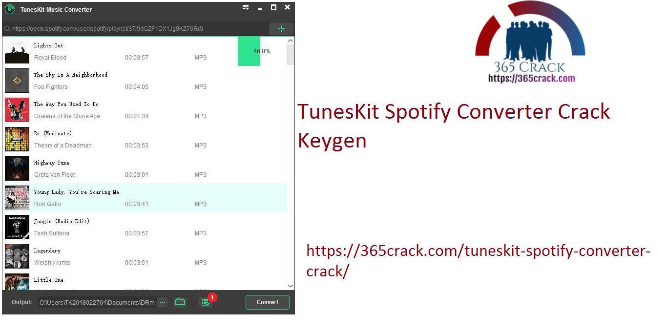 TunesKit Spotify Converter Crack keygen