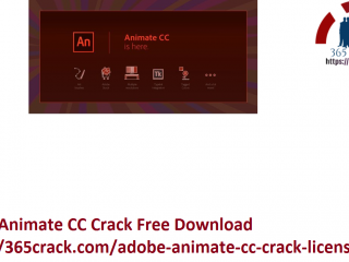 Adobe Animate CC Crack Free Download