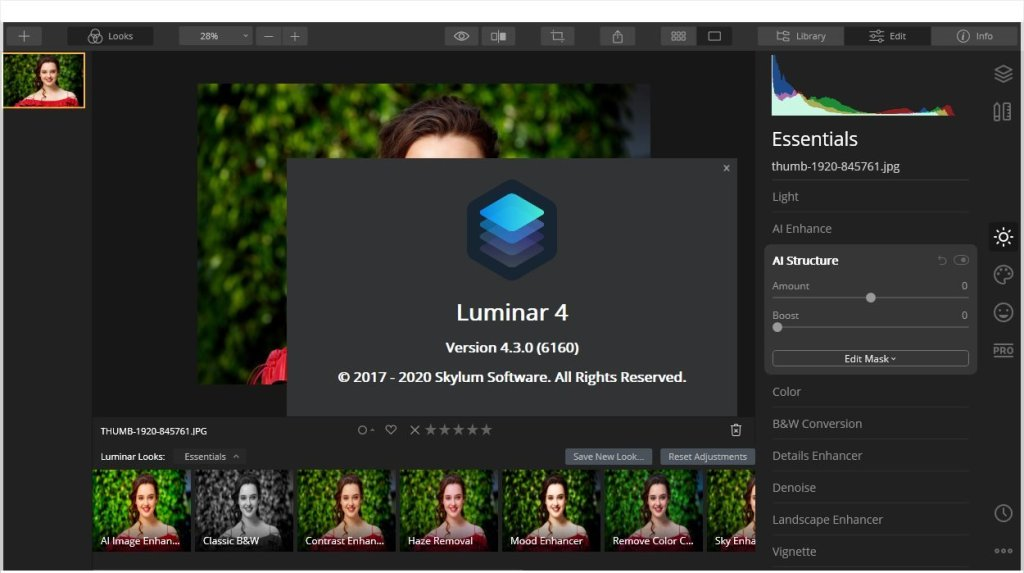 Luminar Crack With Activation Key Download (Updated)